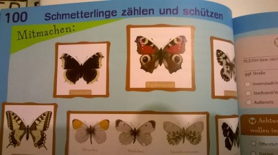 Blaue Infoseiten (C) Glückschuh Verlag